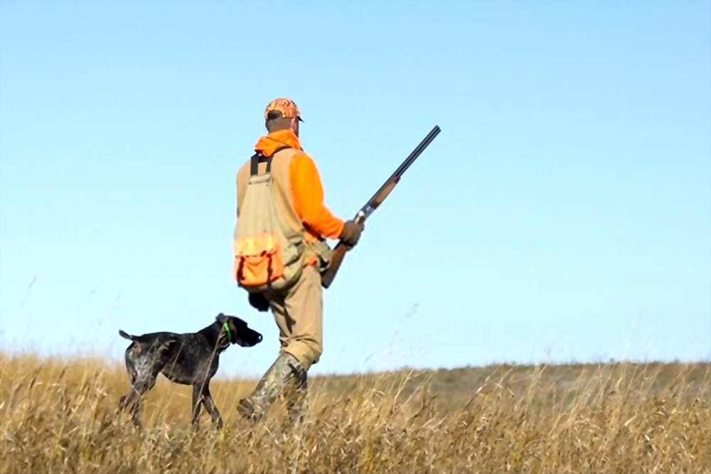 When Does Pheasant Season Open In South Dakota
