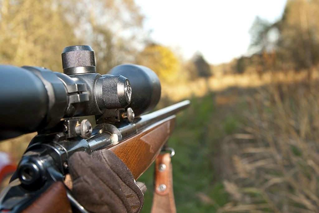 Top 10 Tips on Choosing a Budget Rifle Scope
