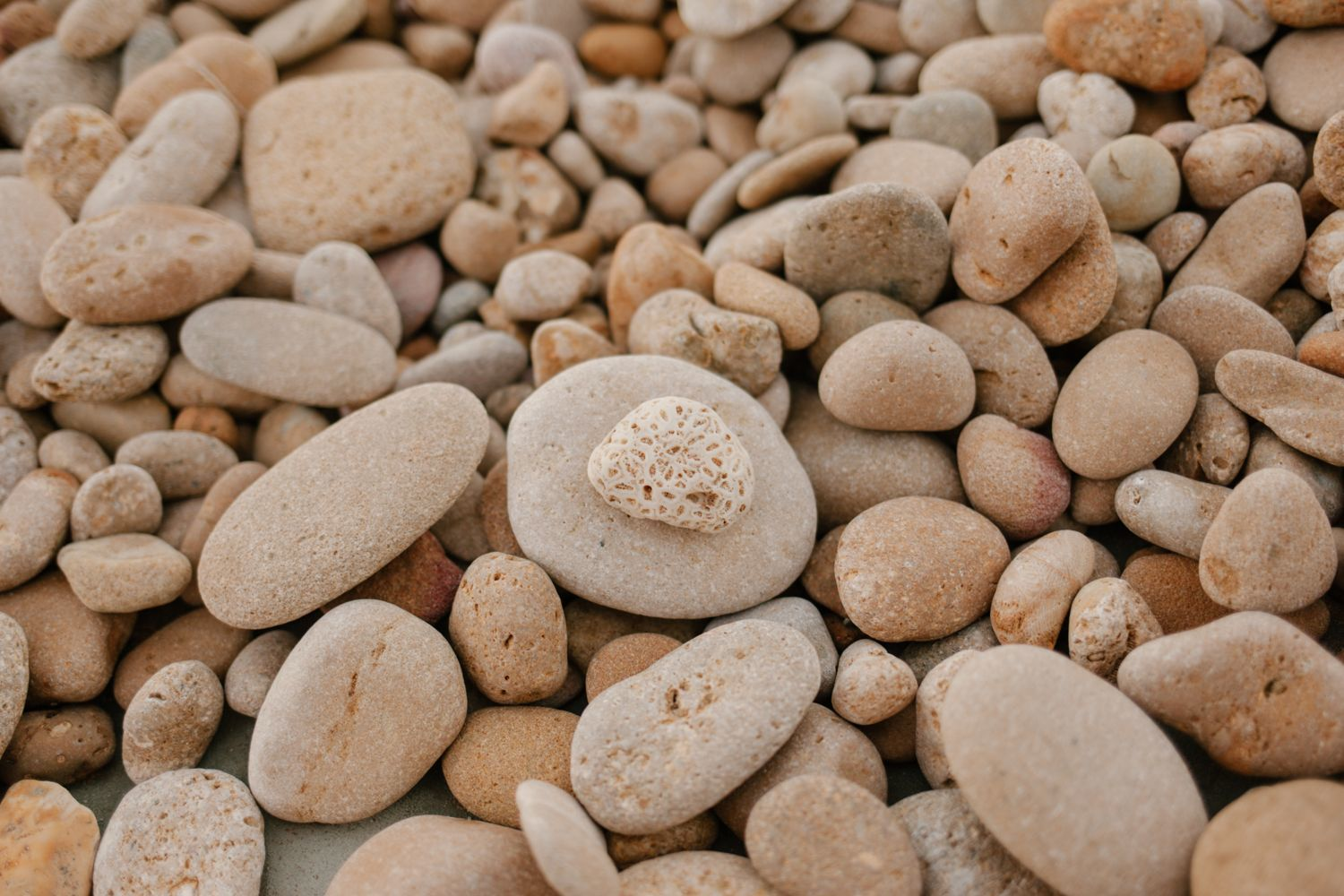 Ideal rocks for stone boiling