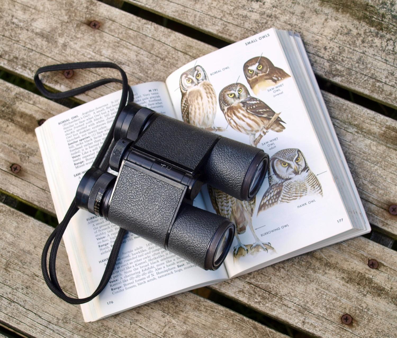 The Best Binoculars For Wildlife: A Buyer's Guide